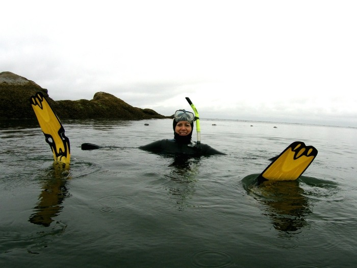 Swimming with seals in Nanaimo Photo via: Sundown Diving