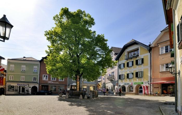 Medieval houses in Gmunden
