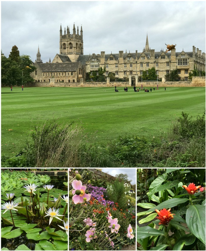 Christ College Meadows and Oxford Botanic Gardens