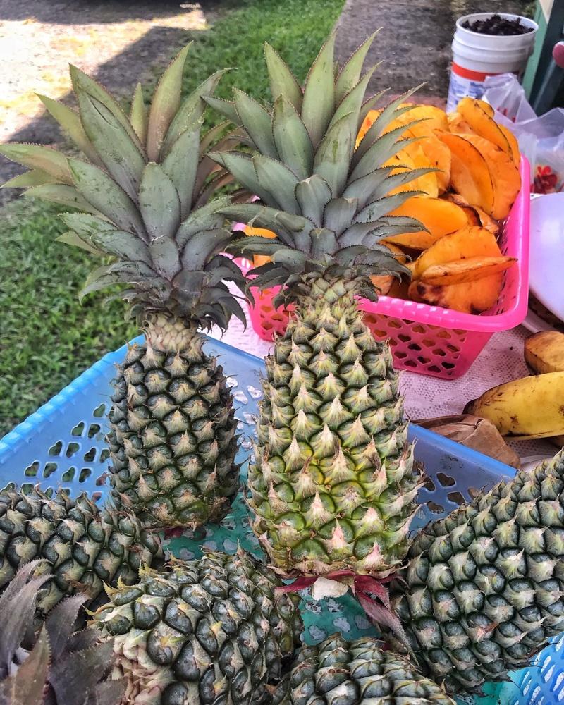 Black Pineapples in Antigua Photo Heatheronhertravels.com